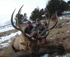 2012-late-season-399-inch-bull-3