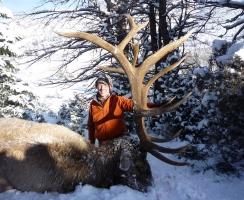 bob-cassels-386-late-season-bull