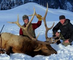 dallas-eckhart-358in-bull