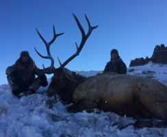Greg with a 350 bull