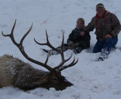 dean-shoell-2008-late-season-bull