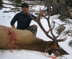 joe-casey-2008-bull-2