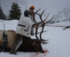 louis-grant-late-season-bull