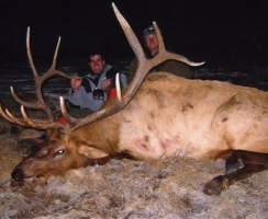 mark-killed-this-bull-in-memory-of-courtney-feely