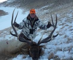 tom-schnider-area-59-late-season-bull-367-sci