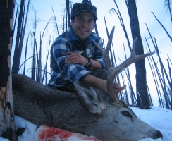 joe-casey-2008-deer